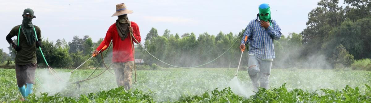 Men in field spraying chemicals